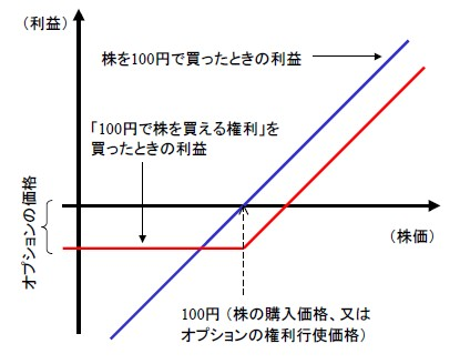 Optiontheory0_2